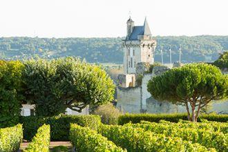 1755_vignes-château-_chinon_Stevens_Frémont.jpg