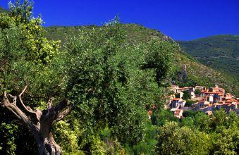Languedoc (c) Sud de France